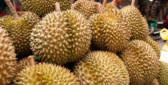 Durian-2-2