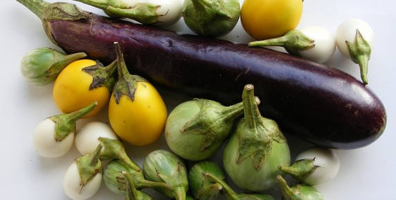 thai-eggplants (5)