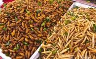 Жареные кузнечики, гусеницы и прочие насекомые