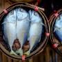 Консервированная тайская макрель (Пла Ту, ปลาทู)