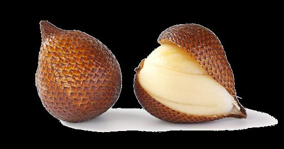 snakefruit-salak (1)
