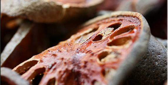 bael-fruit (4)