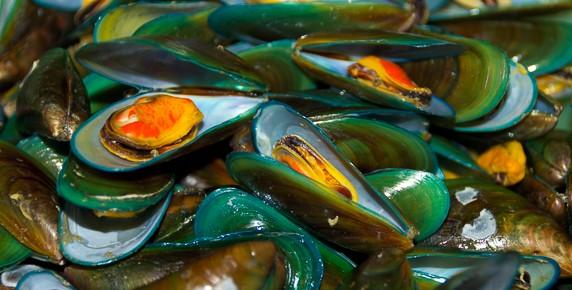 thai clams-3