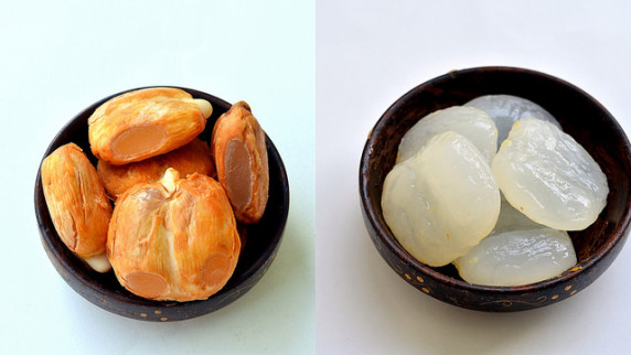 plod-saharnoy-palmy-toddy-palm-fruit (12)